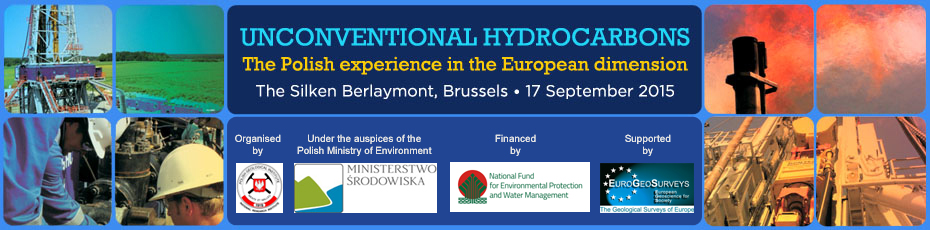 Unconventional Hydrocarbons - The Polish Experience in EU Dimension